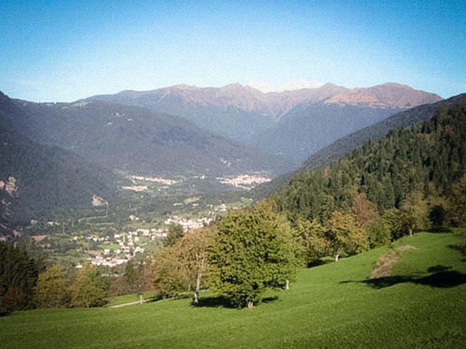 Copertina-Valle-del-But-1.jpg