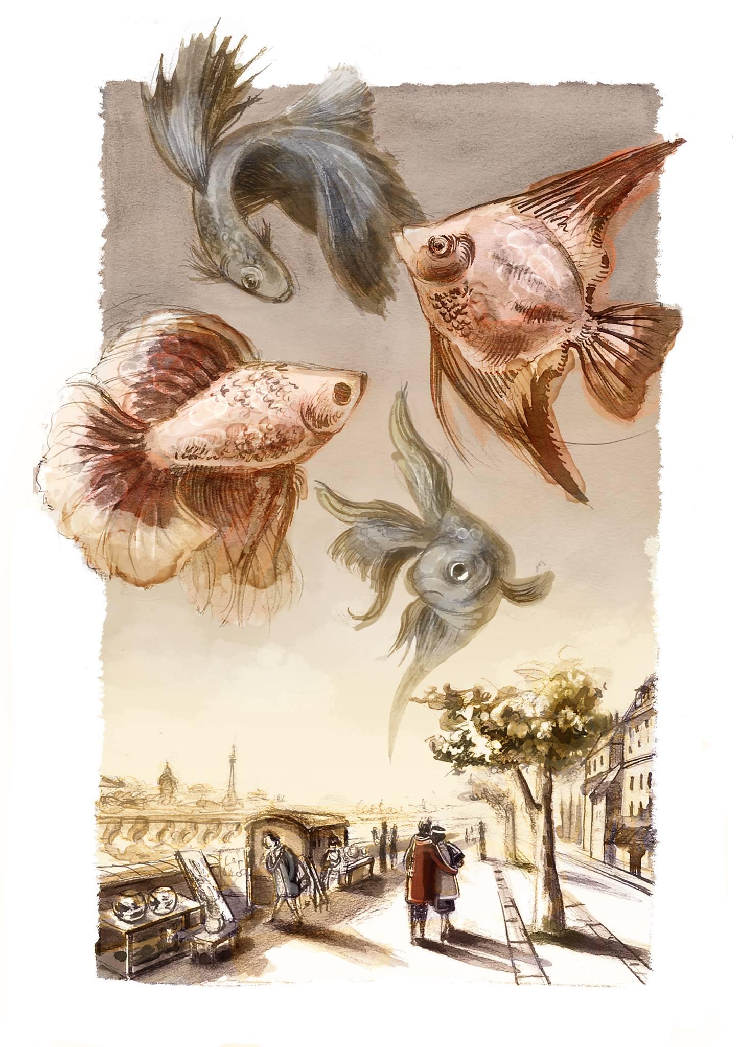 illustrazione di Elisa Gandolfo