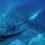 Nel mare dell'intimità: archeologia subacquea dell'Adriatico
